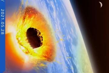 科学好故事细说白垩纪末期大灭绝小行星撞击地球后都发生了什么